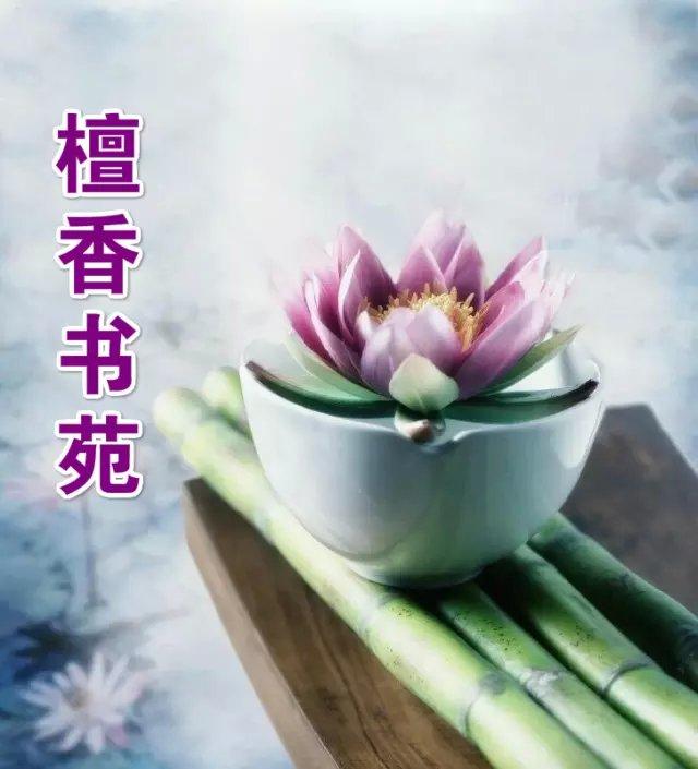 【檀香】人间四月天(组诗)