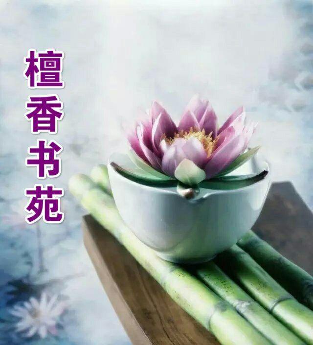 【檀香】劝游子(诗歌)